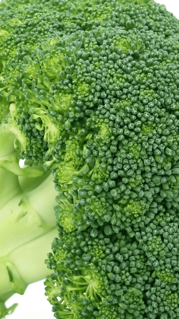 Can Dogs Eat Broccoli?