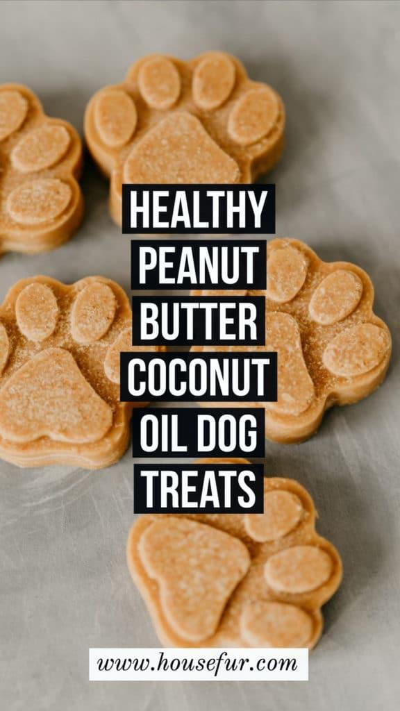 Healthy Peanut Butter Coconut Oil Dog Treats
