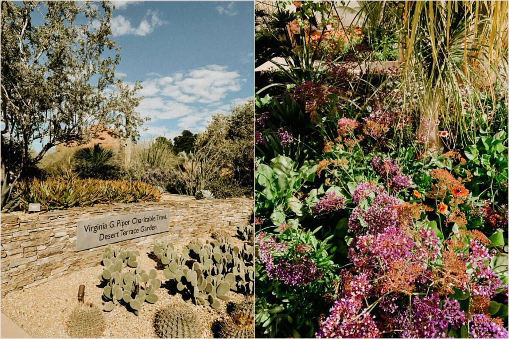 week trip Scottsdale Arizona