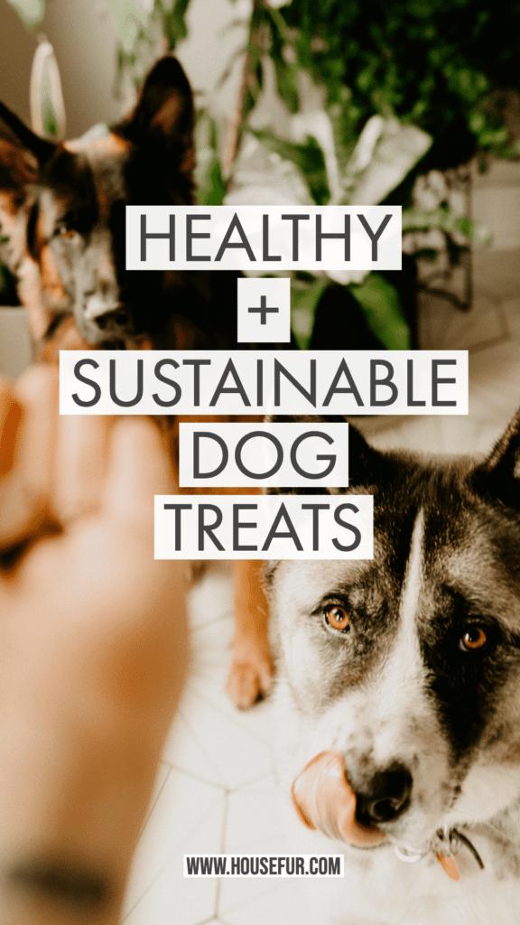 SUSTAINABLE DOG TREATS