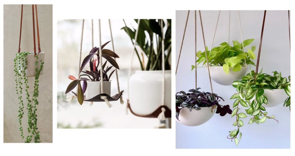 favorite etsy houseplants