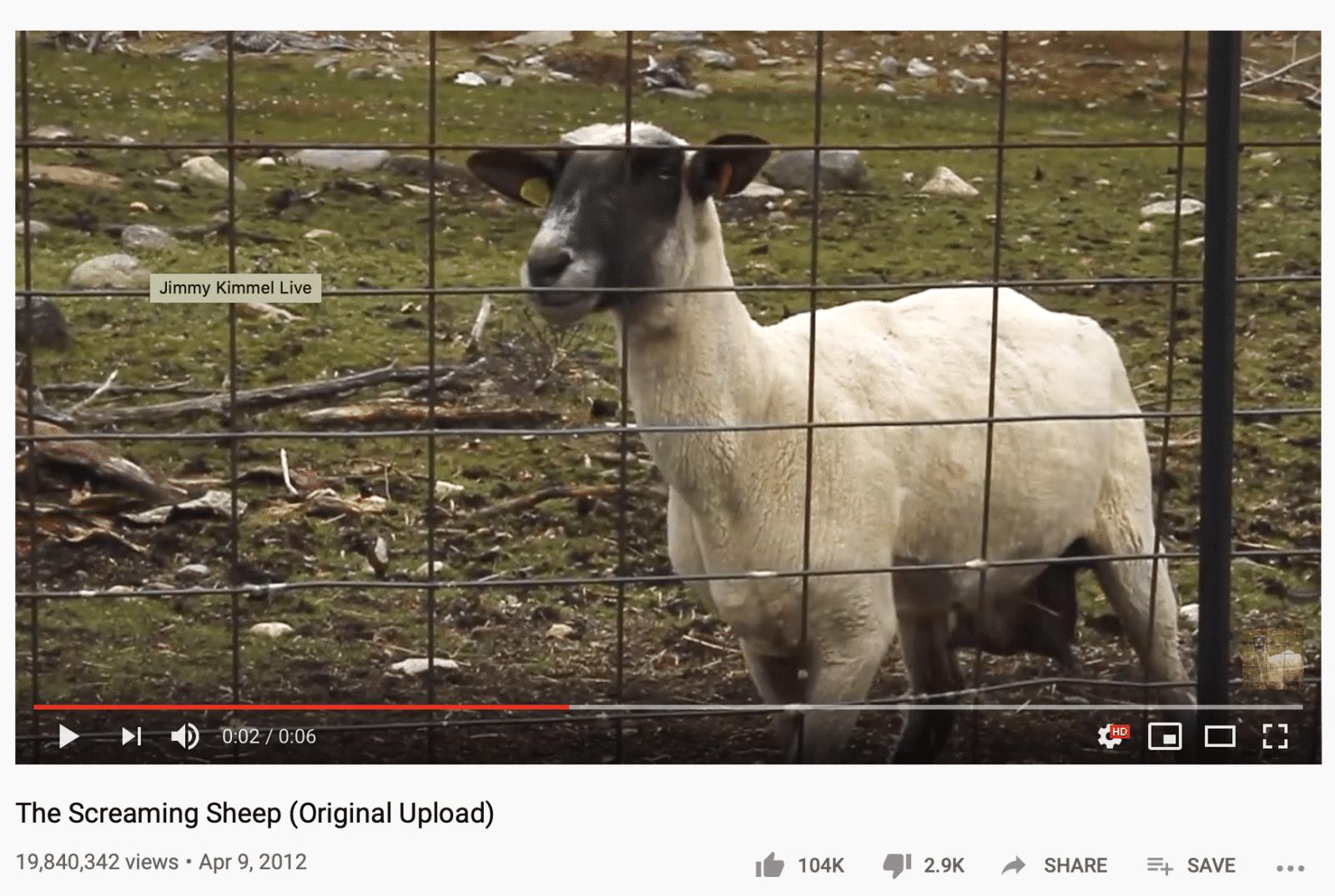 screaming goat YouTube