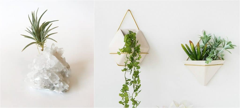 planters for air plants