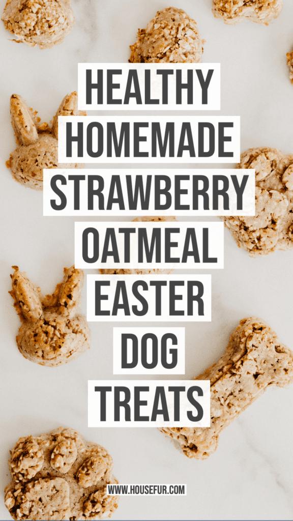 Healthy Homemade Strawberry Oatmeal Easter Dog Treats