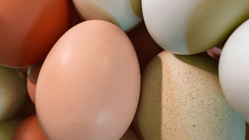 what to do with Easter eggs