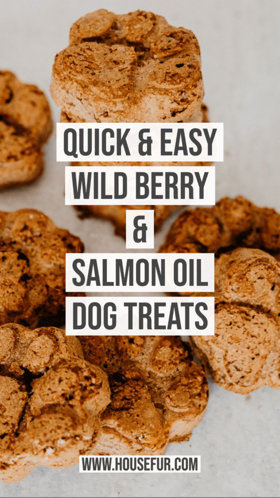 Healthy Homemade Wild Berry Salmon Oil Dog Treats
