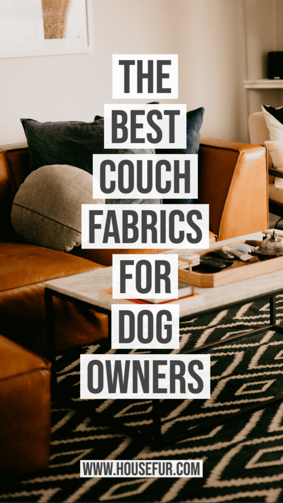 The Best Couch Fabrics for Dog Owners