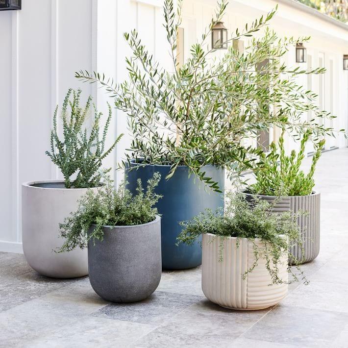 Cecilia Fiberstone Indoor/Outdoor Planters