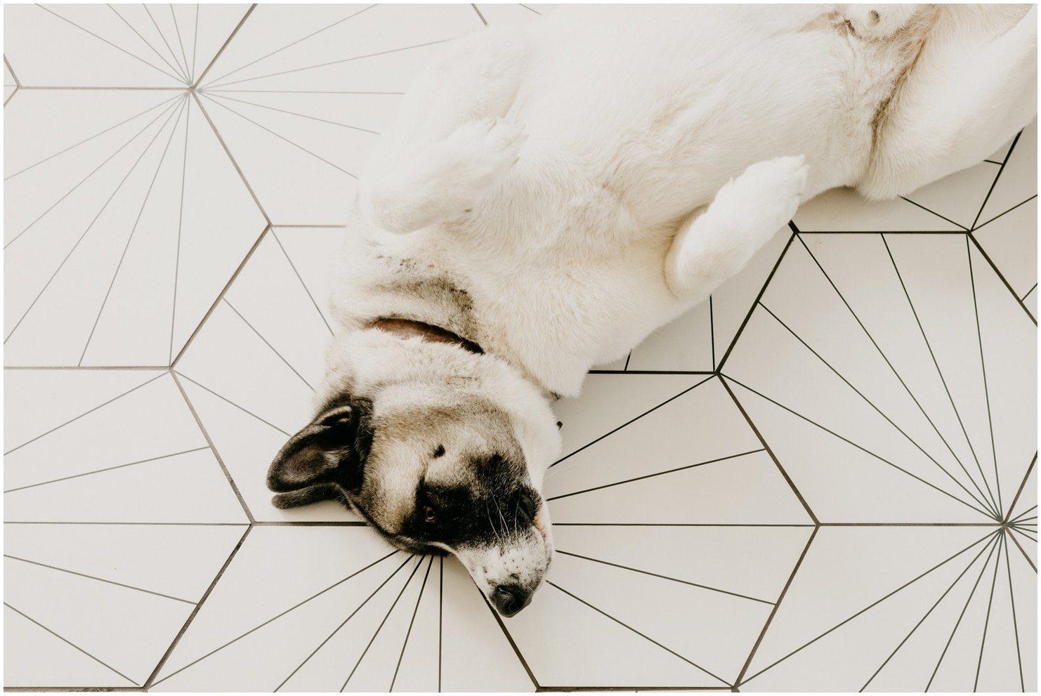 mission tile floor