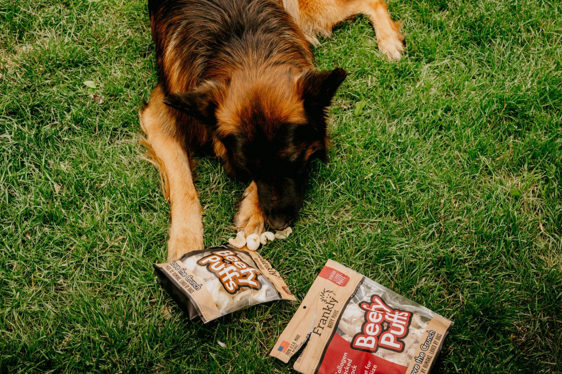 Frankly Beefy Puff dog treats