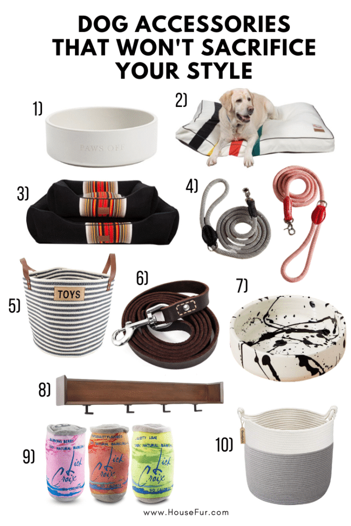 stylish dog accessories