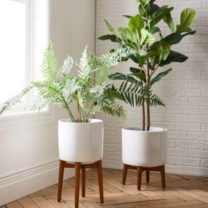 modern planter