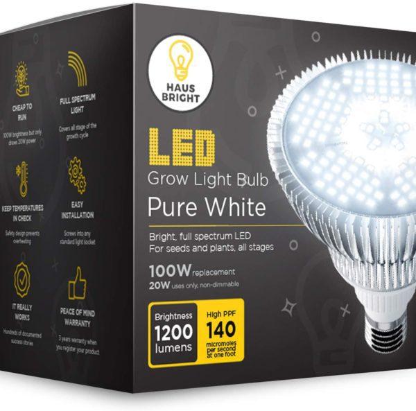 haus bright plant light