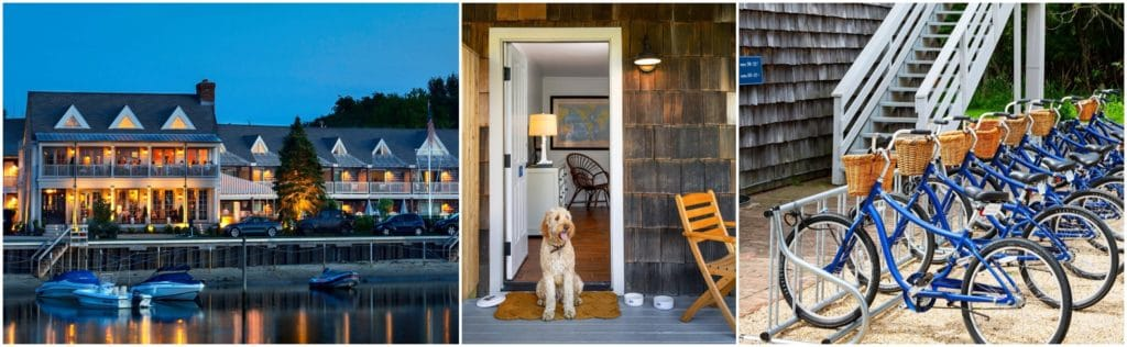 Barons Cove Hotel Dog Friendly