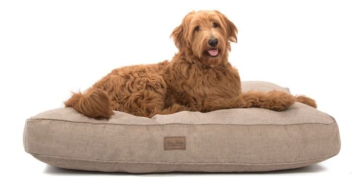 harry barker dog bed west elm