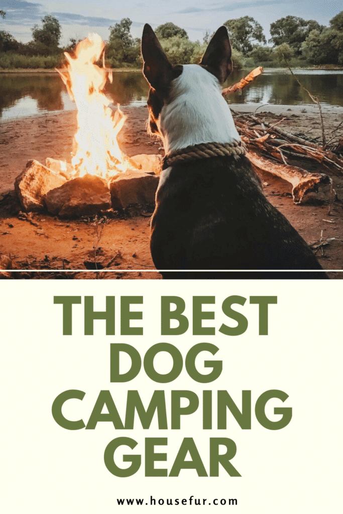 best dog camping gear