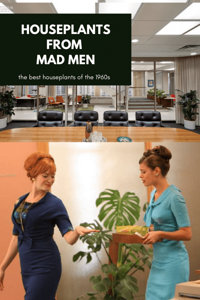 houseplants from Mad Men TV Series