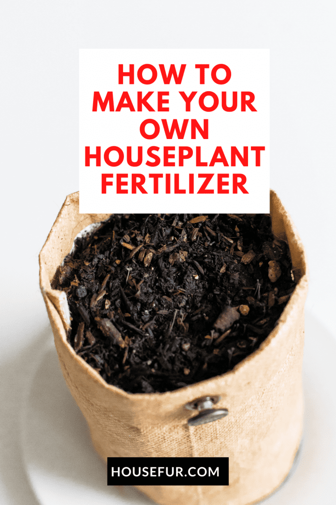diy fertilizer