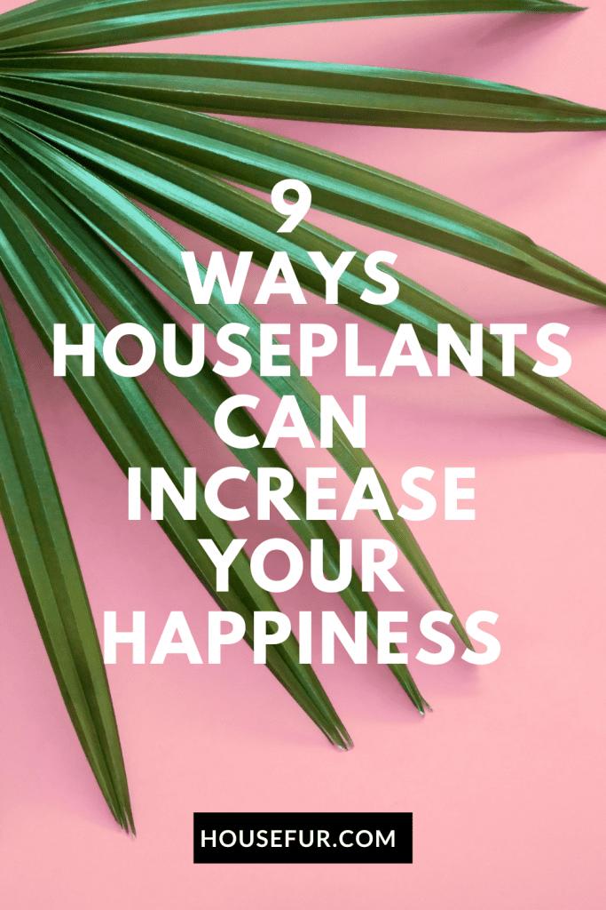 houseplants increase happiness