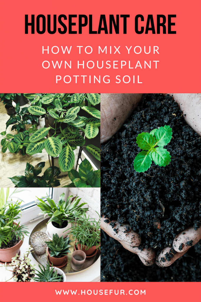 the best potting soil for houseplants