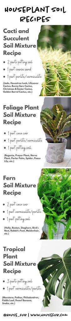 houseplant soil requirements