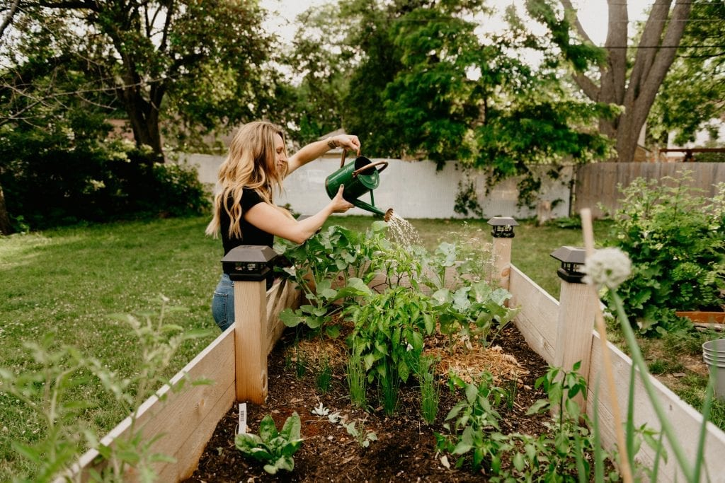 Wisconsin gardening