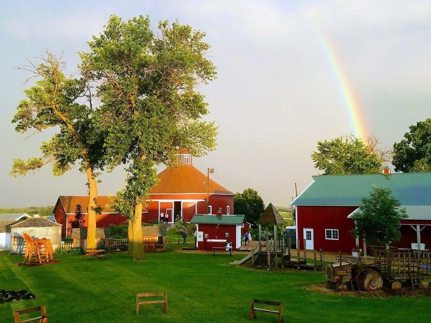 Schuster's Pumpkin Farm